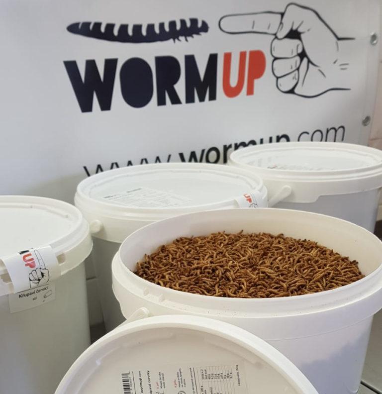 Legislativní pravidla pro výrobu potravin z hmyzu
